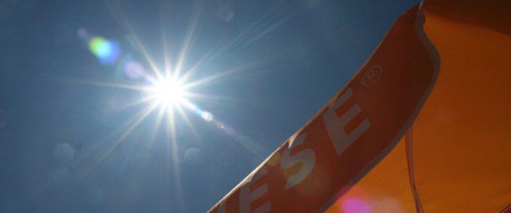 Hitzefalle Auto: So schnell droht Lebensgefahr im parkenden Fahrzeug